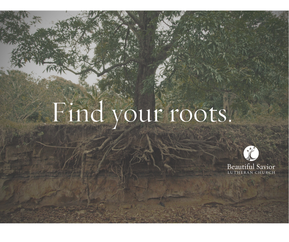 copy-of-roots-of-faith-header-2